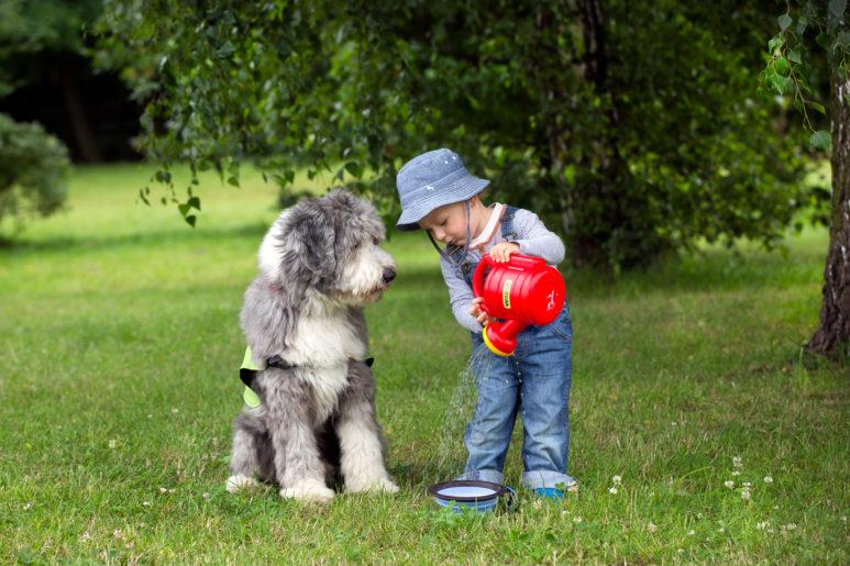 Lucyna-Lewandowska-dziecko-i-pies