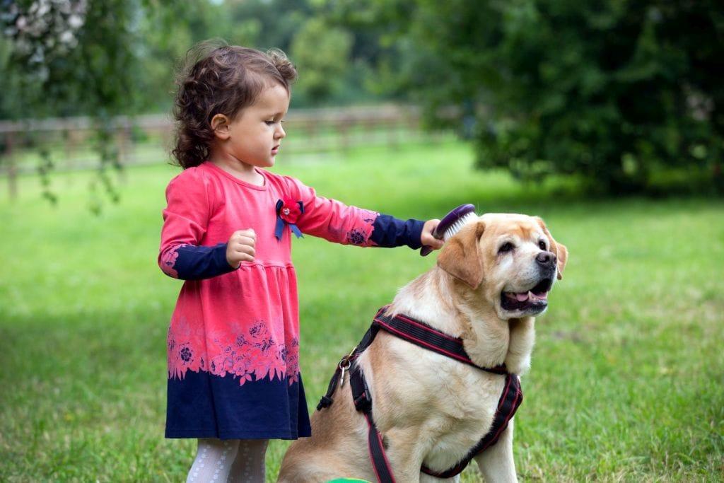 jak fotografuje się dzieci i zwierzęta