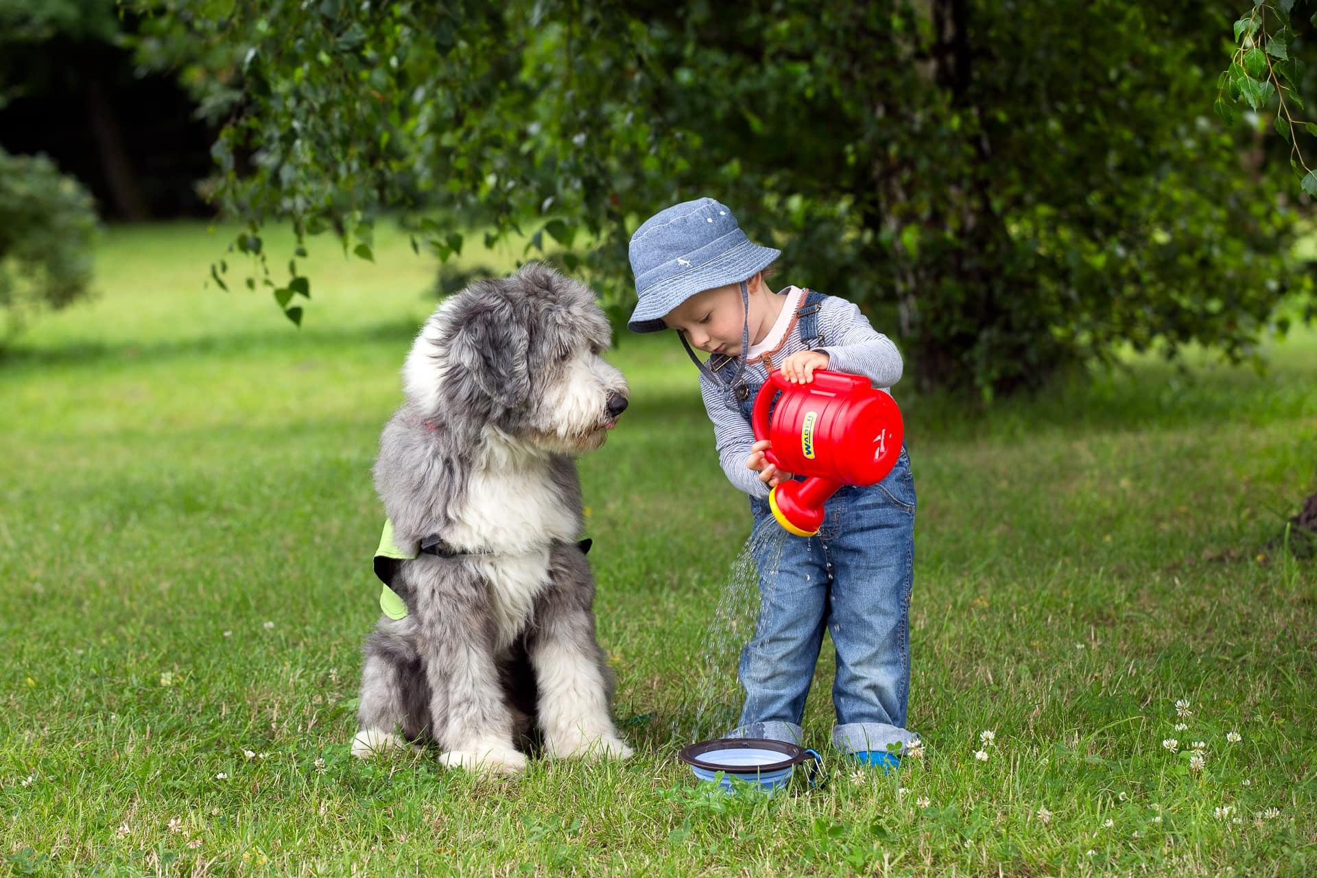 Chłopiec i pies