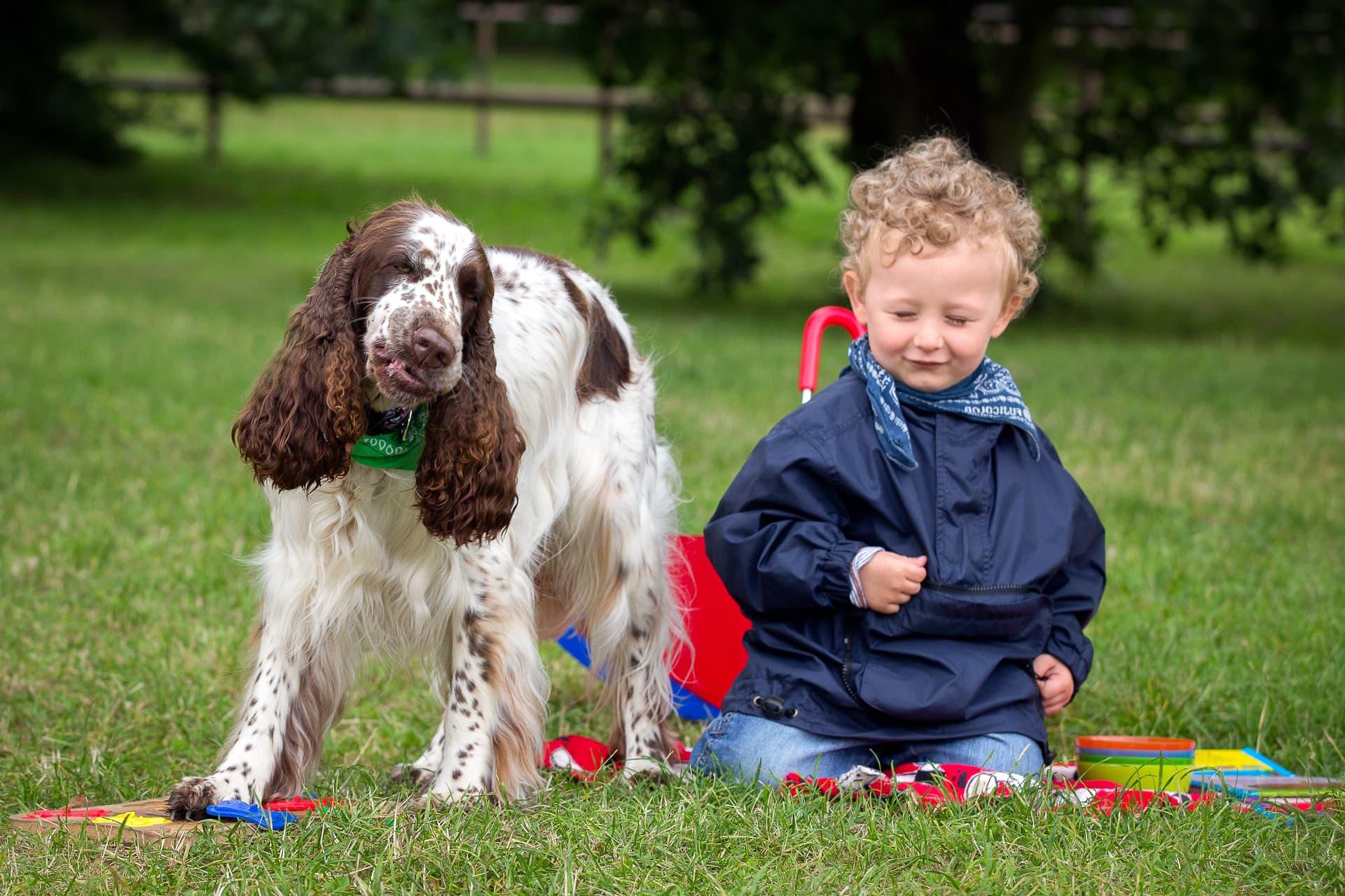 Pies z Fundacji Dogtor