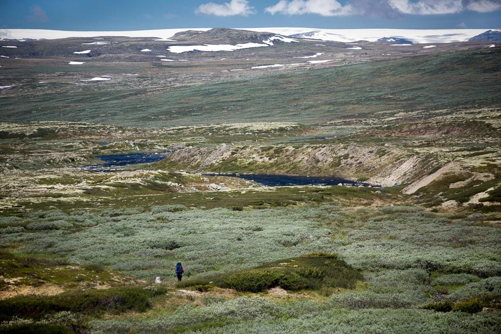 Norwegia-park narodowy