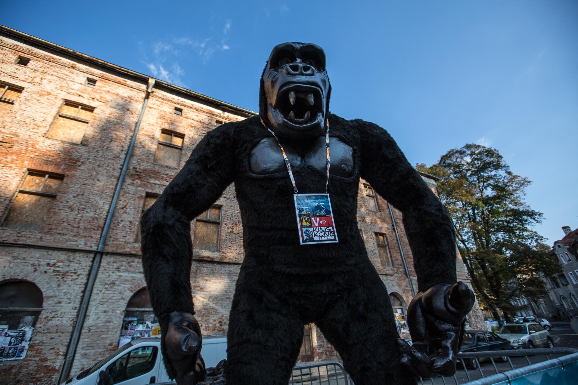 Festiwal Górski-King Kong